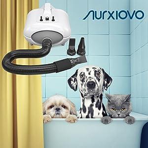 dog blow dryer