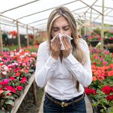 Harm of Pollen
