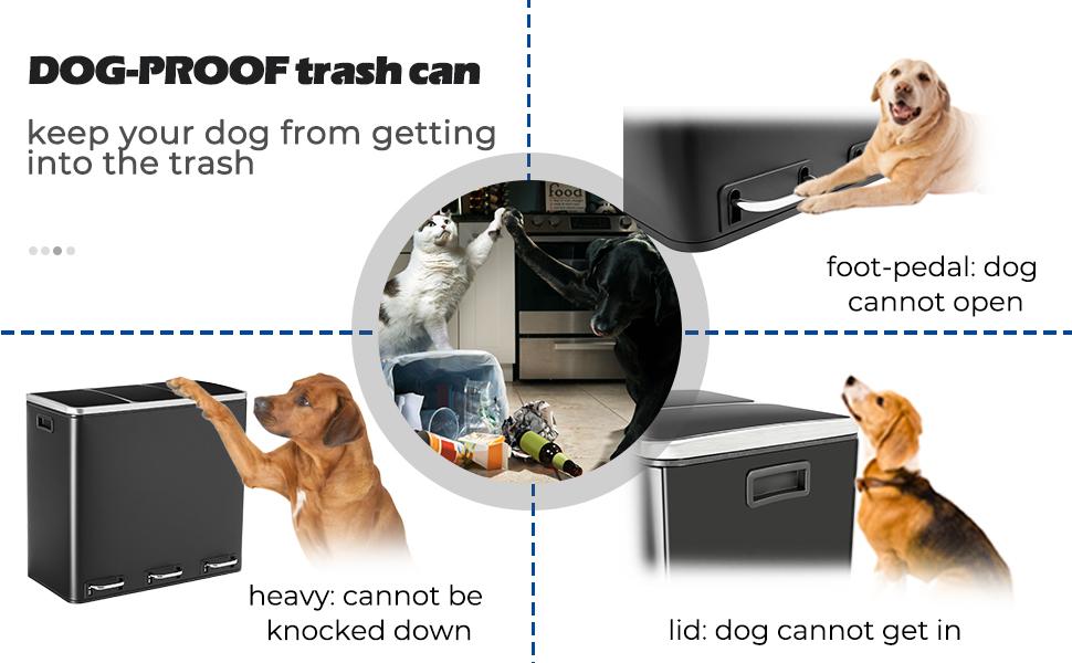 dog-proof trash can