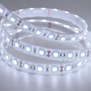 bright lights strips