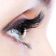 strong magnetic eyelash