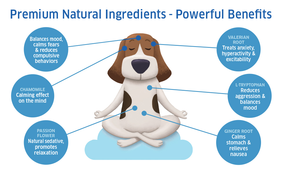 Natural Ingredients with powerful benefits