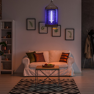 bug zapper outdoor