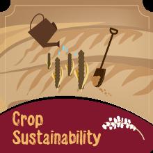 Crop sustainability