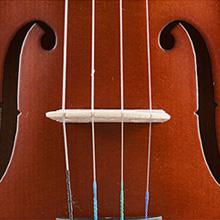 violin kids