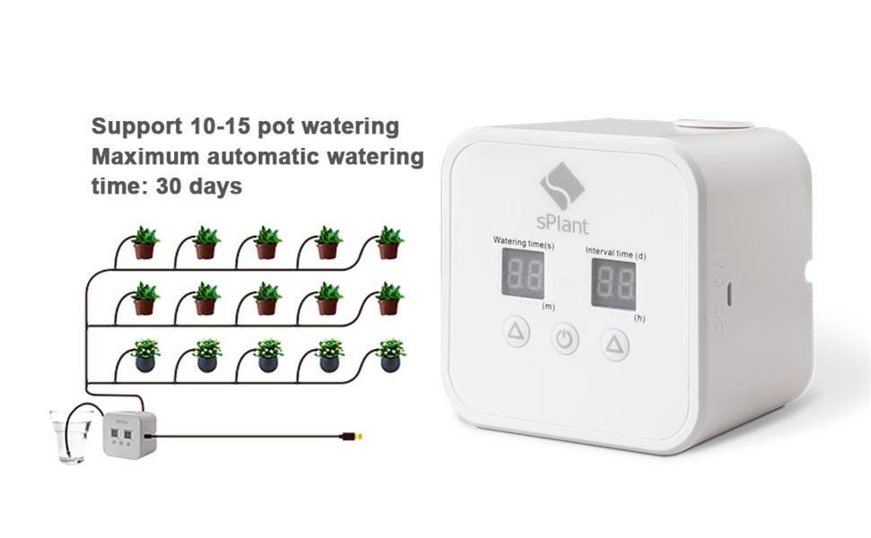 splant watering system