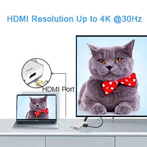 4K HDMI Output