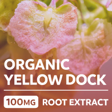 Organic yellow dock root extract