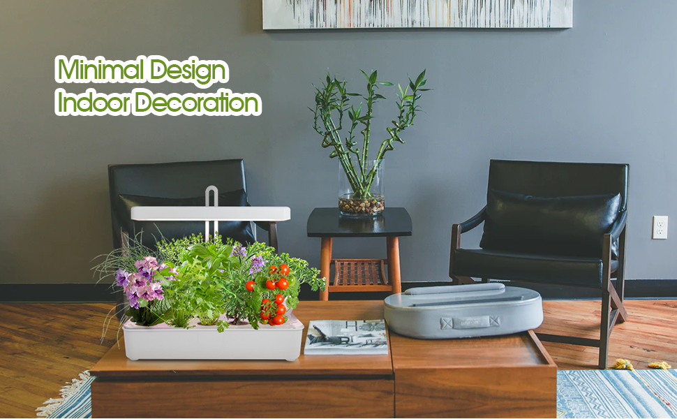 Minimal Design Indoor Garden