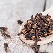 clove VetVeda Bye Bye Tick and Fleas Shampoo for Dog's  and Cat's