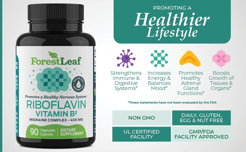 vitamin b2 riboflavin boost digestive system support