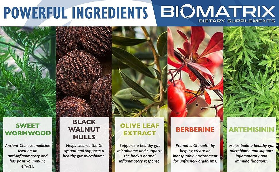 BioMatrix PARACID-X Ingredients