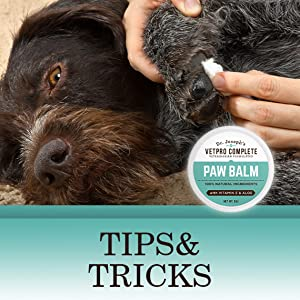 Paws and Nose Protection Paw Balm for your pet