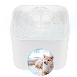 pet water fountain filters