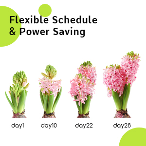.Flexible Schedule & Power Saving