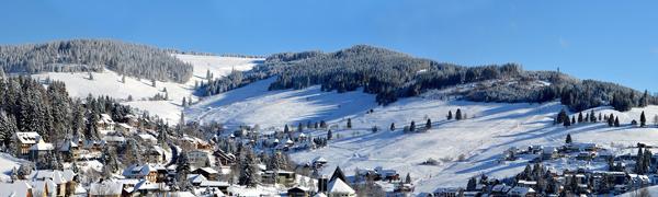 WinterWise