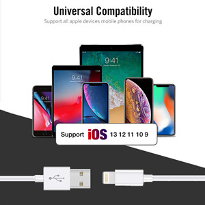 Apple charging cable 10ft