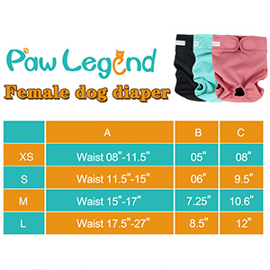 female dog diaper