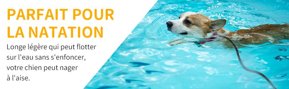 laisse chien légère pour la natation