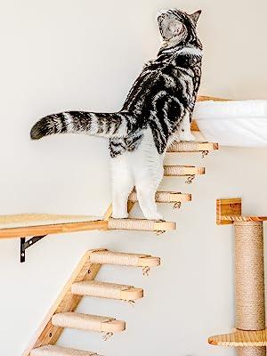 Four Step Cat Stairway