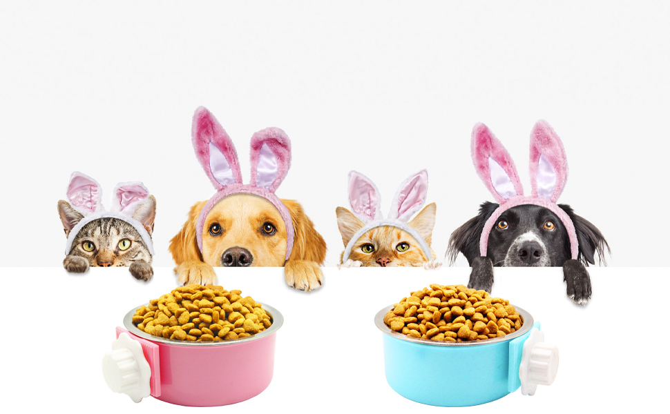 The pink and blue dog bowls are brightly colored and are a favorite with pets