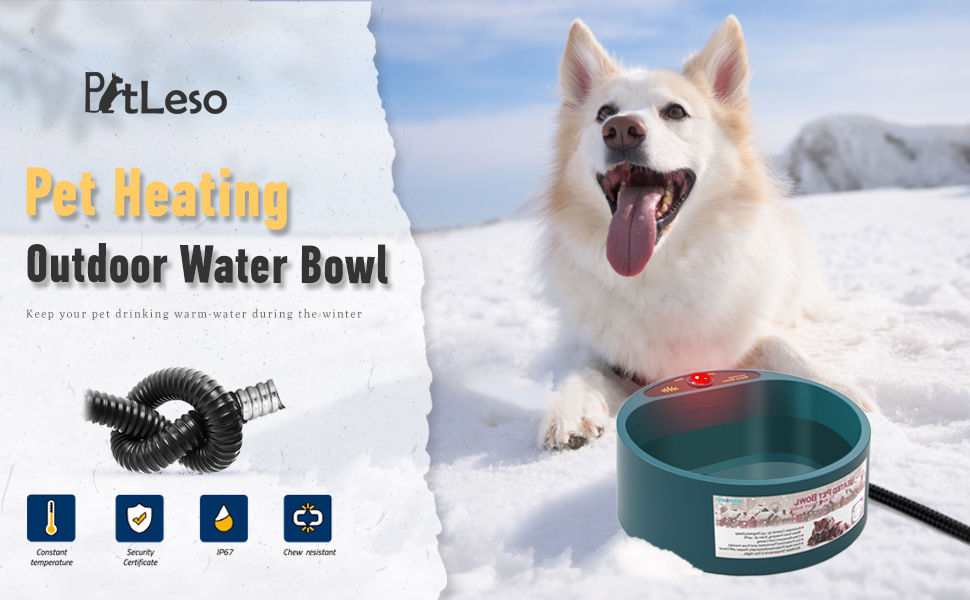 Heating Bowl