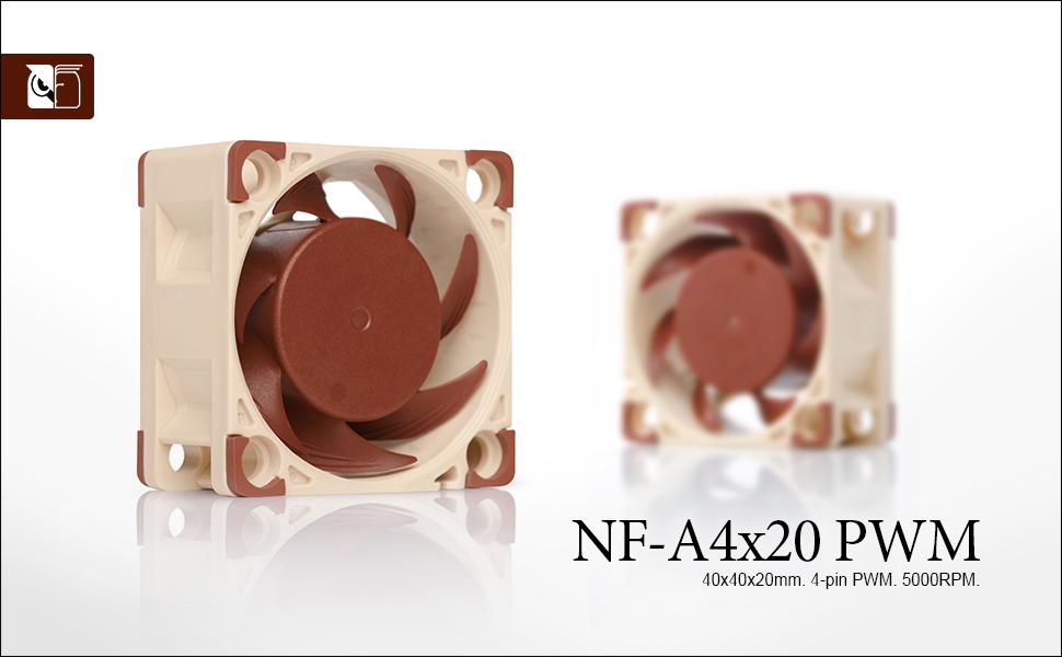 Noctua NF-A4x20 PWM, Ventilador Silencioso de Gran Calidad, 4 ...