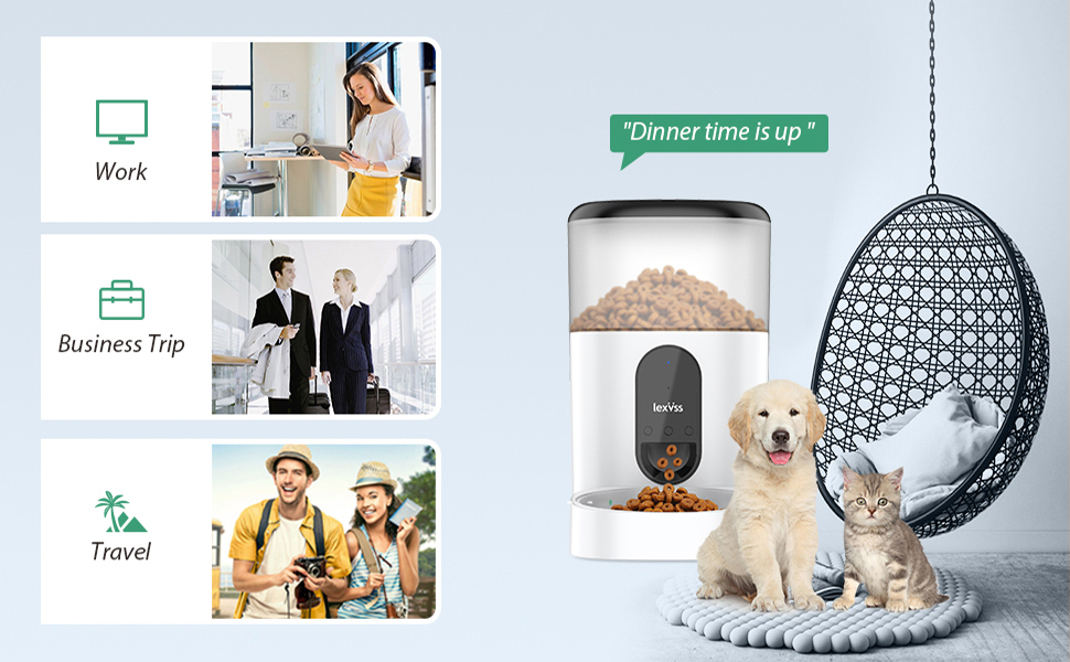 convenient auto food feeder for pets  when you at work