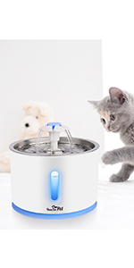 water fountain for cat