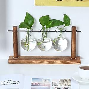 cool planter plant terrarium terrarium with plant water terrarium large house plants indoors live