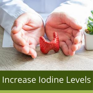 increase iodine levels