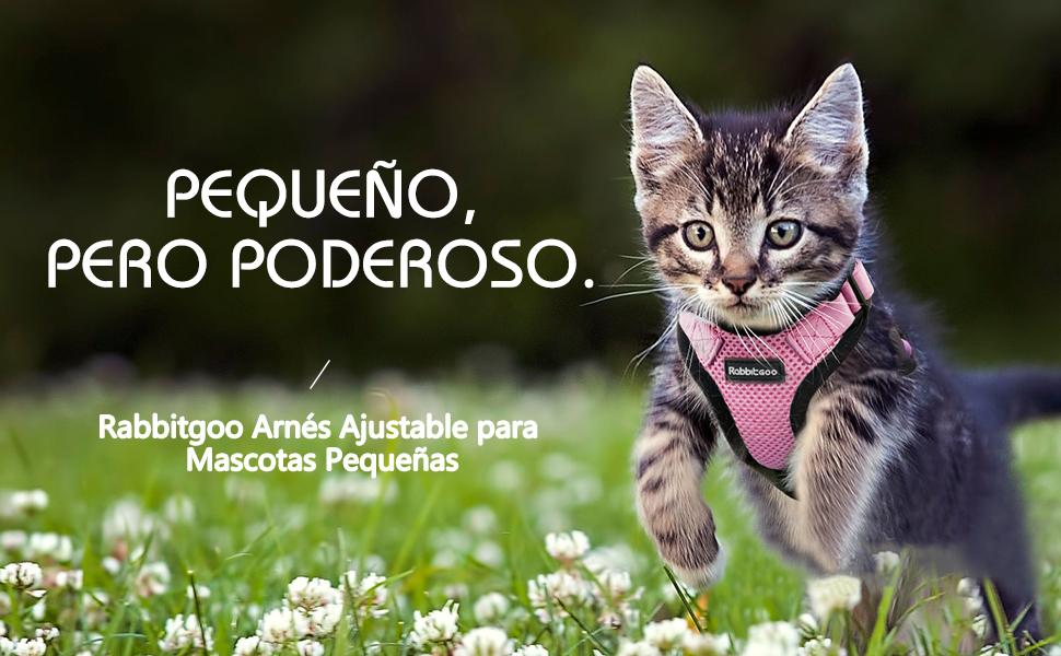 rabbitgoo Mini Arnés Perrito Ropa Gatos Rosado Arnés Gatos ...