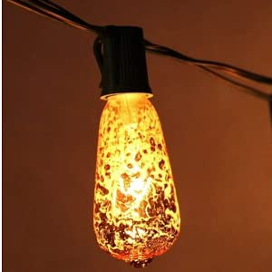 Mercury Light Bulb replacement bulb outdoor string lights