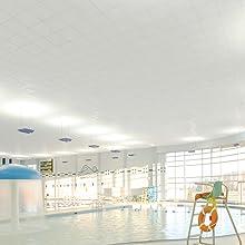 Swimming Pool Genesis Ceiling Tiles