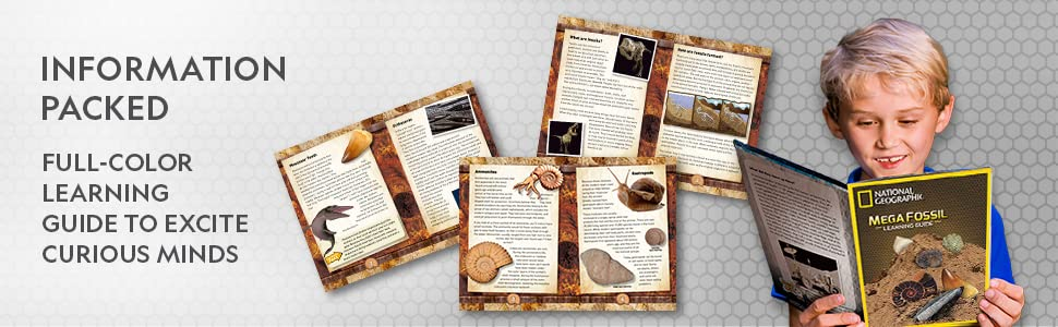 mega, fossils, dinosaur, dig, kit, real, archeology, bones, stem, science, excavation, mining, dino - NATIONAL GEOGRAPHIC Mega Fossil Dig Kit – Excavate 15 Real Fossils Including Dinosaur Bones & Shark Teeth, Educational Toys, Great Gift For Girls And Boys, An AMAZON EXCLUSIVE Science Kit