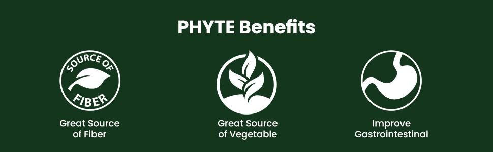 Source of Fiber Vegetables Improve Gastrointestinal