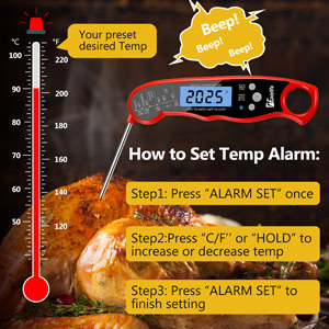 meat thermometer with alarm function