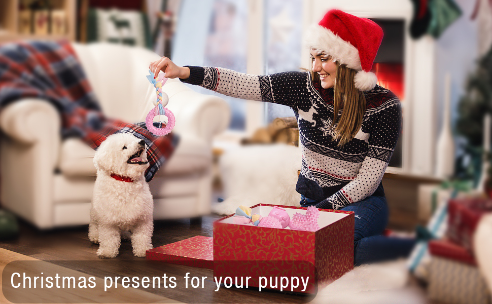 xmas gift for puppies