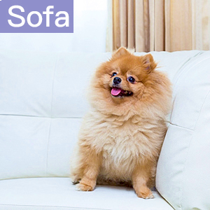 Pet Hair Remover Roller for sofa