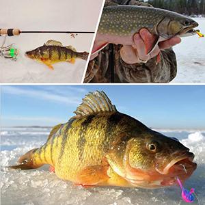 ice fishing jigs