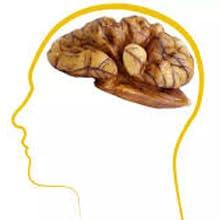 Benefits Brain Heath
