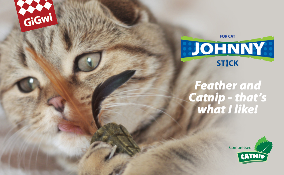 gigwi johnny stick cat toy catnip infused tpr natural feathers