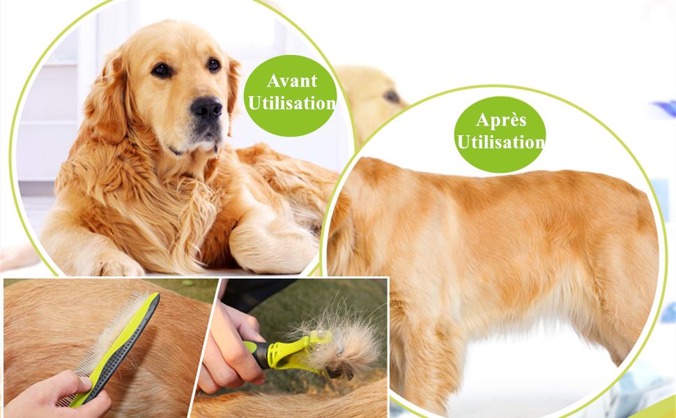peigne chien poil long