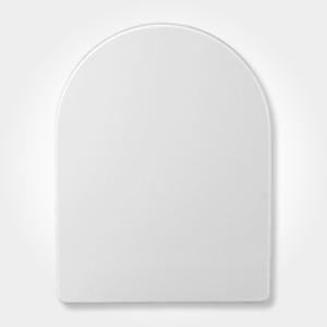 glossy white toilet seat
