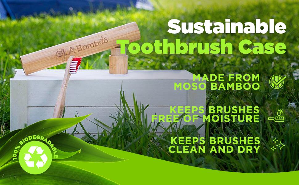tooth brush case toothbrush travel travel toothbrush case bamboo tooth brush wood toothbrush holder