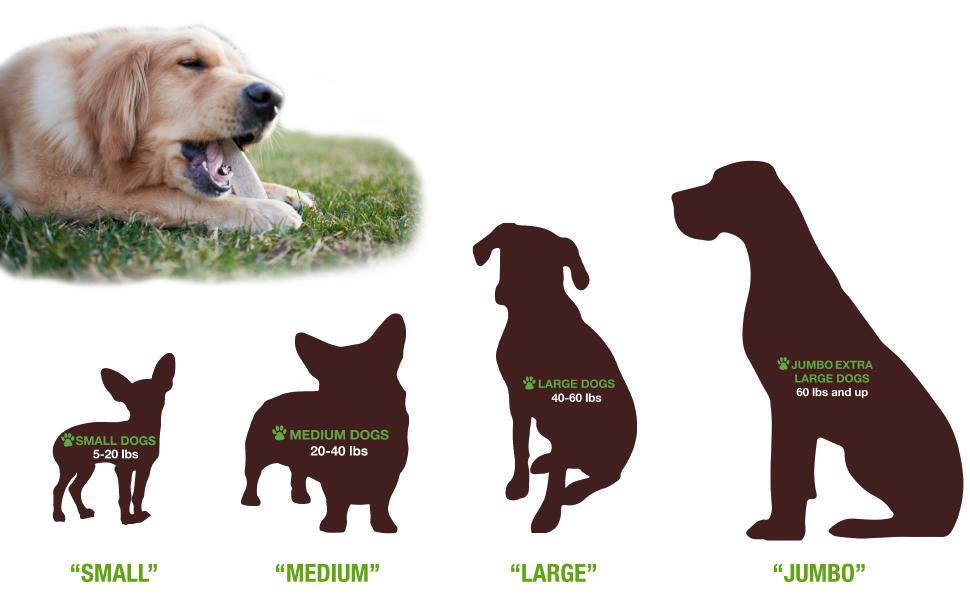 Buck Bone Organics, Elk Antler Dog Chews, Rawhide Alternative, Dog Bones, Dog Treats, Natural Dog