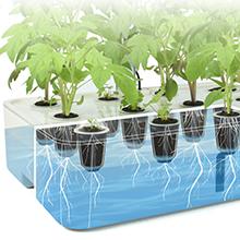 indoor grow system