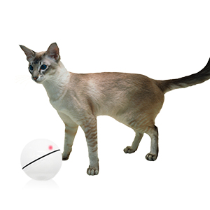 Cat Toy Balls Smart Interactive Cat Ball Toy Red LED light