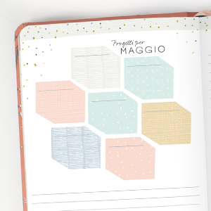 Agenda settimanale 2021 Progetti Calendari mensili Pagine dedicate per i Progetti Budget Note Liste