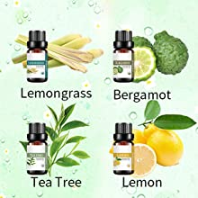 Lemongrass essential oil Tea tree essential oil Bergamot essential oil Lemon essential oil